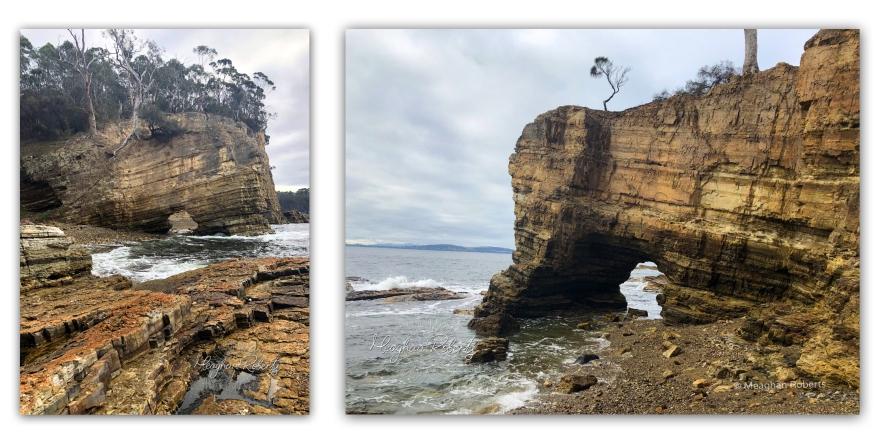 Fossil Cove