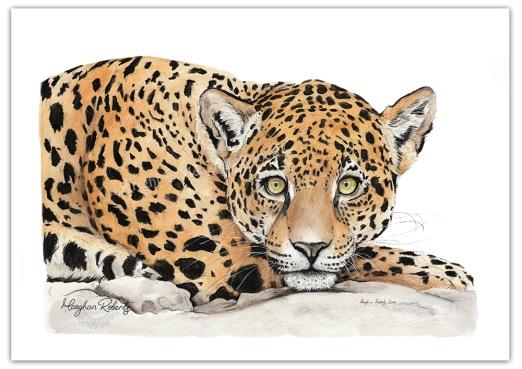 Leopard CR