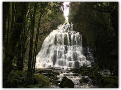 Nelson falls CR2